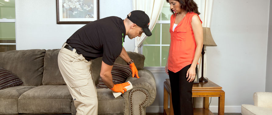 Wyomissing, PA carpet upholstery cleaning